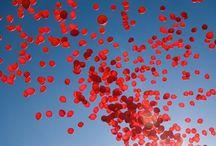 LOVE IS IN THE AIR / el amor te llena y te hace flotar