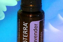 doTERRA / by Kristie Lee (Guns) Van Noie