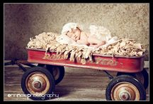 Newborn Photography / by Julie Young