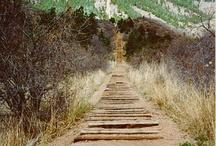 Trails To Do / by Todd Hildebrandt