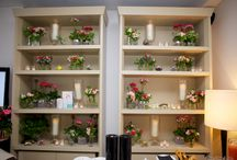 Liz Earle launches