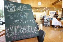 Staff Blog / Hirose-Beetle ヒロセビートルのスタッフブログ
