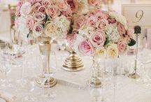 Roses roselife