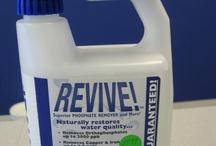 Quick Pool Algae Remover