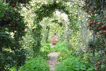 úžitkové záhrady