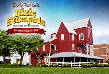 Dixie Stampede / The Most Fun Place To Eat!
