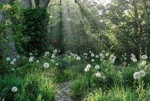puutarhan tunnelmat