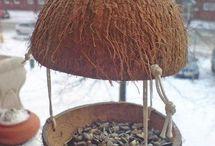 Karmniki dla ptaków