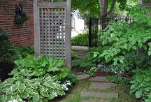 senderos y divisiones de jardin