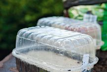 How to grow plants? / The most beautiful potting benches -->  www.pflanztisch-test.de