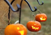 Halloween / my favorite time of the year....... / by Alexandra Case ( Queen Creepy)