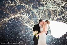 winter trash the dress/post wedding shoot