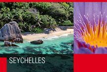 Seychelles / 115 isole, perfette, una più bella dell'altra.