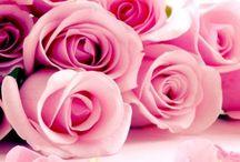 Ideer brudebukett  / Rosa, sjokoladebrunt og kremfarget bryllup. Rosa roser som hovedblomst.