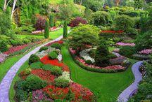 Сады. Ландшафт