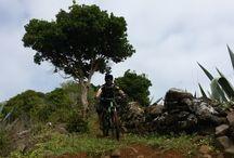 Mountain Biking / Mountain Biking on the island of Sao Miguel and Santa Maria