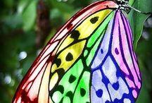 butter×fly=farfalle burrose