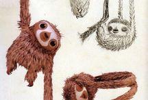 Sloths ♡