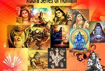 Rudra  Homam / Rudra Series Homam