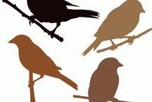 Vögel Muster