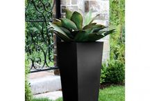 Self Watering Planters / Browse through our wide variety of lightweight, sturdy & weather-resistant self watering planters & watering pots for flowers, vegetables & houseplants.