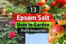 Garden fertilising tips
