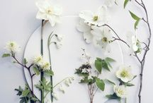 White wedding flower, / White blooms, elegant wedding flowers, Weiße Hochzeitsblumen