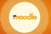 Learning Environment / Moodle