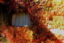 Tafi del Valle, estaciones: primavera, invierno, otoño, verano