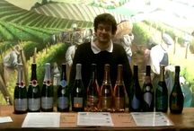 Our 13 different Champagnes