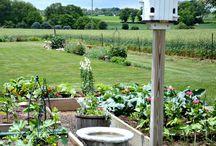 Jardin, fleurs, botanique...