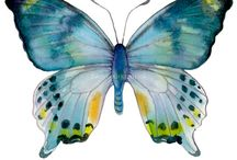 tablouri fluturi