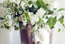 . : Flowers : .