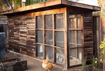 Chicken cage ouside the house