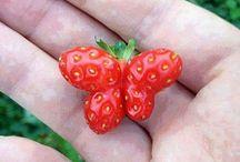 grappige groente en fruit