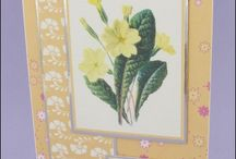 Mother's Day and Floral cards