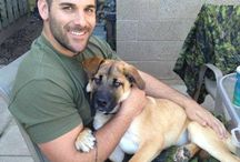 Military Pets / The mighty who protect us and their beloved pets