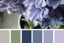Purple Hyacint Inpiration