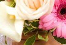 Wedding Vows and Ceremonies