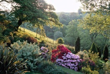 Gardens I Think are Beautiful  / by Wanda Redden