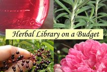 Remedies, herbals, traditional medicine / by Jessica Morsell