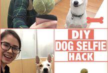 Hack DIY