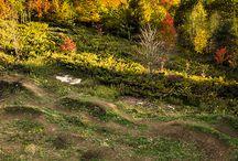Mountain Biking / where i want to go biking, anything related