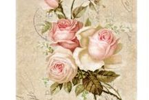 Roses d'amour