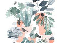 rostlina ✨