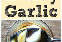 Probiotic Aliments