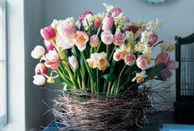 Abigail Amira Loves: Springtime