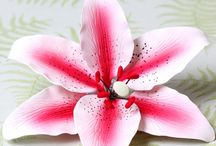 Gumpaste Lily Sugarflowers / A collection of beautiful readymade open lily Sugarflowers.