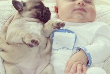 Baby and dog / Tierno