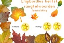 Digibordlessen/prentenboeken